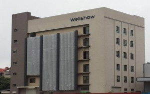 Wellshow_factory